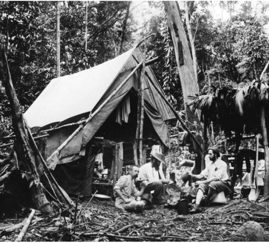 20110623163712_tin miners camp in the bloomfield river district c1884.jpg
